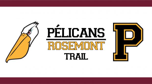 Bannière Pélicans Trail